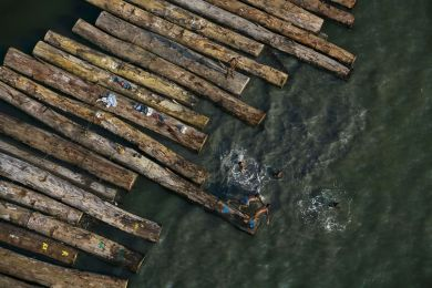 Foating wood near Port Gentil, Gabon