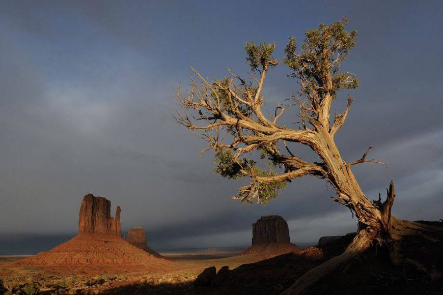 Monument Valley Navajo Tribal Park, United States