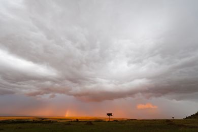 Kenya, Masai Mara, storm at sunset