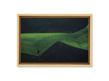 Agricultural landscape, Turkey