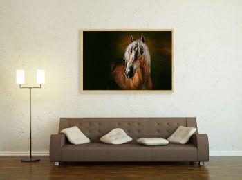 Avelignese pony