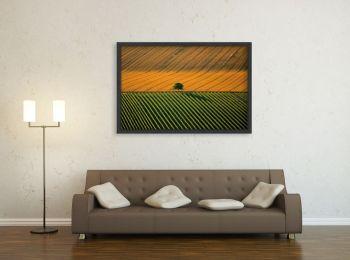 Agricultural landscape near Cognac, France