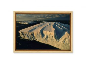 Icebergs en Terre Adélie, Antarctique