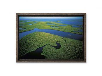 Les Everglades, Floride, Etats-Unis