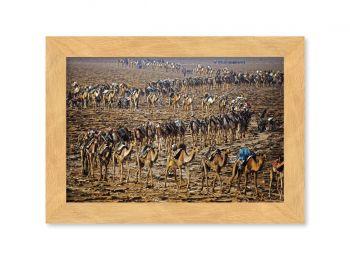 Caravane du sel, Ethiopie